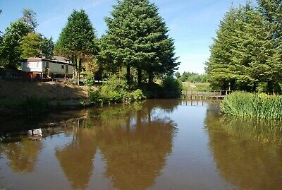 Static Caravan Holiday South West Wales - Private Rural Location - Pet Friendly
