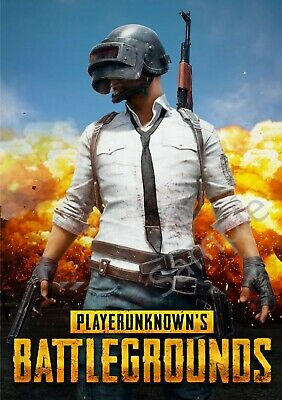 PlayerUnknown's Battlegrounds (PUBG) Game Poster - 11x17 - 13x19 - #1