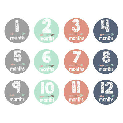 12pcs Baby Pregnant Women Monthly Photograph Stickers Month 1-12 Milestone Props