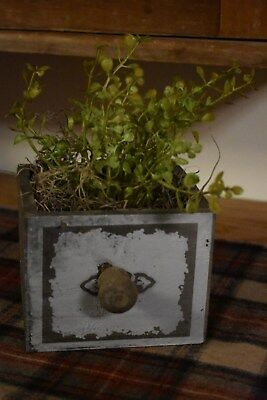 New Primitive Country Farmhouse Wooden Drawer/box With Baby Grass Home Decor