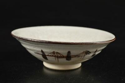 G9670: Japanese Seto-ware White glaze Muffle painting TEA BOWL Green tea tool