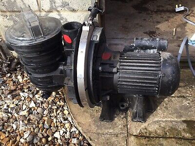 Sta Rite Swimming Pool or Hot Tub Pump 5P2R 3/4hp Reconditioned with trap