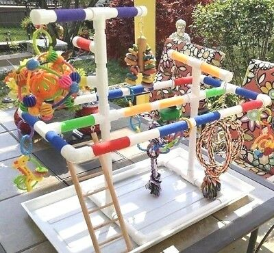 """Deluxe Large 3/4"""" Parrot Perch Fun GymStand wPAN & Ladder  **FREE SHIPPING**"""