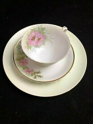 Vintage Tea Cup, Saucer and Bread Plate Pretty Pink Wild Roses Made in Japan