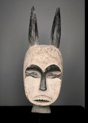 Outstanding  Tribal Igbo Spirit   Mask With Horns  --   Nigeria      -