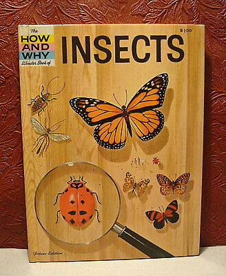 The How & Why Wonder Book of INSECTS Hardcover 1960