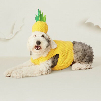 Hyde and Eek! X-SMALL Pet Pineapple Set Vest/Hat