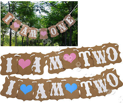 I AM TWO Bunting Garland Banner Baby Girl or Boy 2nd Birthday Party Decoration