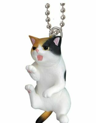 Keychain Cat Stains Calico 4 Cm Epoch Capsules Toy Giapponese #2