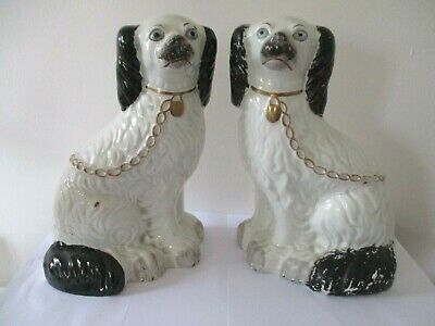 Pair of Rare Blue Eyed Antique Staffordshire Spaniel dogs