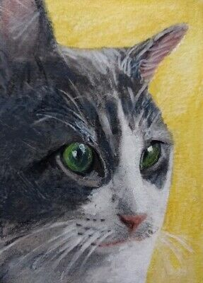 aceo original watercolor cat 219365. Single-piece work by S.Gnoffo