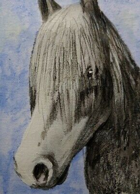 ORIGINAL watercolor/charcoal pencil Aceo HORSE 218288.Single-piece by S.Gnoffo