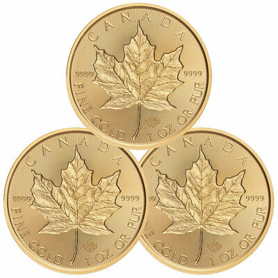 Lot of 3 2019 Canada 1 oz Gold Maple Leaf Incuse $50 GEM BU PRESALE SKU57477