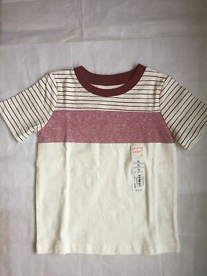 Nwt~Boy's Red/cream Stripe S/s T-Shirt Size 18 Months~W/tags