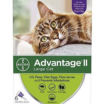 Bayer Advantage II Flea Prevention for Cats over 9lbs - 6 Doses - Free Shipping