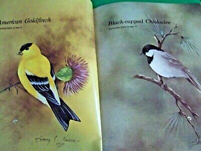Birds With A Magic Brush By Sherry Nelson 1986 Realistic Birds Tole Paint Book