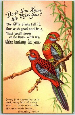 """1940s RALLY CARD / Sunday School Church Postcard Parrots """"We're Looking for You"""""""