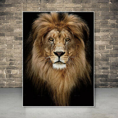 Lion painting picture canvas art home decoration Animal art wall poster print