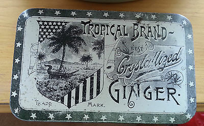 Old Advertising Tin Tropical Brand Best Crystallized GINGER Palm Tree Alligator