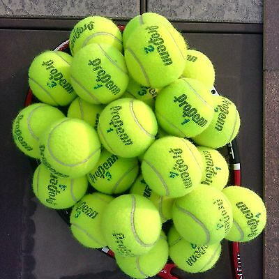 15 Used Pro Penn Tennis Balls, Dog Toy - Self Massager - Table and Chair Feet