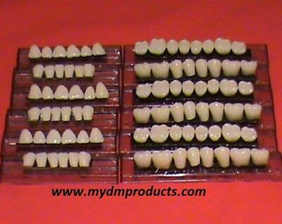 Acrylic/Resin teeth 100 Denture Set x 200 Anterior 200 Molars