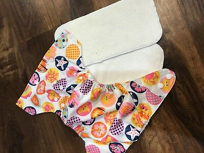 ALVA Cloth Diaper Lot with 2 Inserts each  Minky, Ladybug