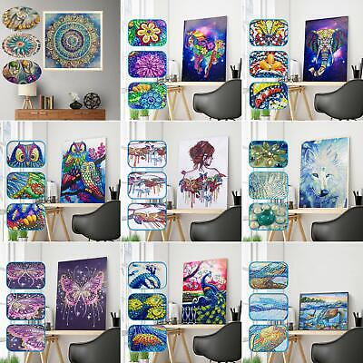 Special Shaped Diamond Painting 5D Partial Drill Cross Stitch Kit Crystal Strict
