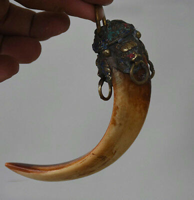 Collect Old Chinese Wild Boar Tooth Inlay Lion Beast Ward off evil Pendant