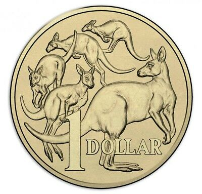 2018 $1 Coin UNC Mob Of Roos.Ex RAM Mint Bag.** Low mintage 0.2m Coins.