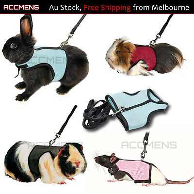 Small Animal Guinea Pig Forret Hamster Rabbit Squirrel Vest Lead Harness Clothes
