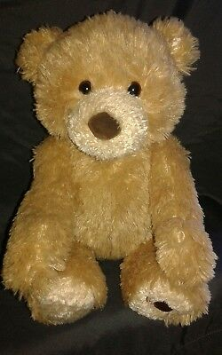 BABY GUND   Peek A Boo Talking Teddy Bear Plush Soft Stuffed Animal.