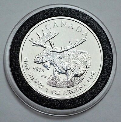 RARE 2012 WW Canadian Moose-Wildlife Series Maple Leaf .9999 Silver Bullion Coin