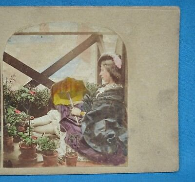 Charming Late 1850s Hand Tinted Genre Stereoview Risque Lady Bare Legs Butti