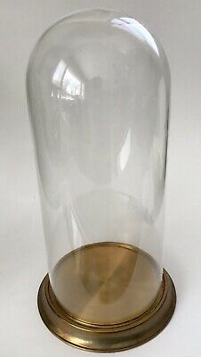 """Antique Victorian 14.5""""  Hand Blown Glass Dome Display Cover With Brass Base"""