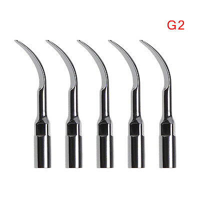 5X Dentist Ultrasonic Piezo Scaler Scaling Tips Tip G2 fit Dental EMS USA-HOT