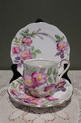 Royal Albert Bone China Trio - Dog Rose - Cup Saucer Plate - High Tea - Vgc