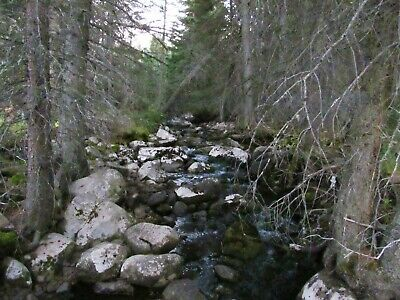 Montana Gold Mining Claim Placer Silver Mine Telegraph Creek 20 acres