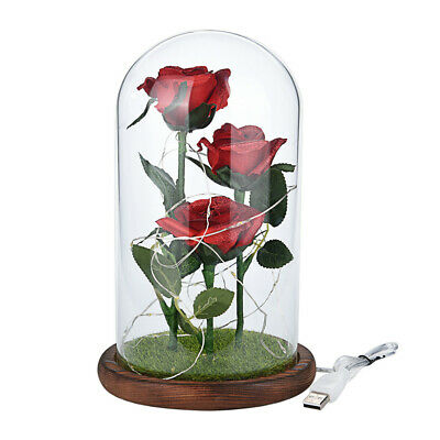 Beauty And The Beast Enchanted Rose Glass Dome LED Lighted Wedding Decor Gift Zn