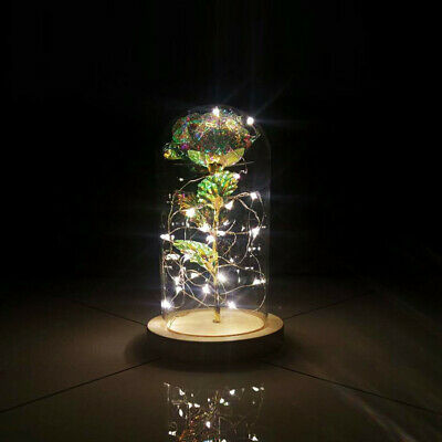 Beauty And The Beast Romantic Simulation Rose Glass Cover Led Micro Landscape Zn