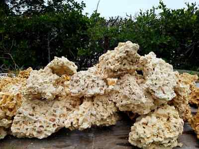 35 lbs Med/Lrg Dry Reef Base Rock, Lightweight, Porous, Great for Aquariums Live