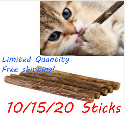 20pcs Cat Snack Matatabi Chew Catnip Stick Pet Teeth Molar Cleaning Brush Toy