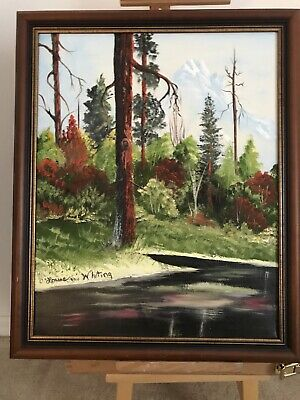 Oil painting on canvas, Forest Scene, Signed By 82 Yr Old Artist, Framed