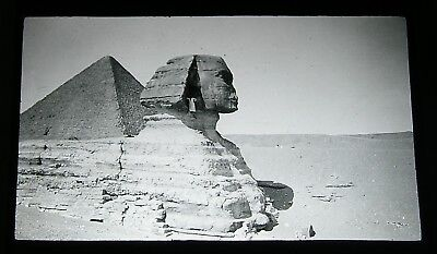 Antique magic lantern slide - Sphynx Egypt ancient history egyptian civilisation