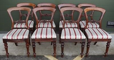 Harlequin Set of 8 (7+1) James Reilly Victorian Mahogany Dining Chairs Antique
