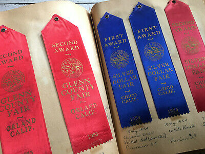 County & State Fairs, Fairs & Expositions, Fairs, Parks