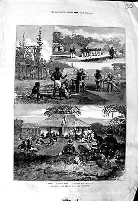 Original Old Antique Print 1873 Isle Pines Caledonia Convicts Houses Governor