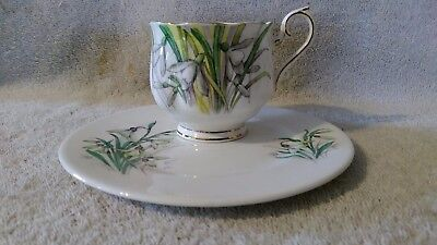 Royal  Albert Bone China Flower of the Month Series January Snowdrop England