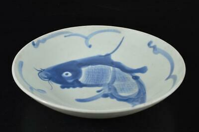 S3390: Chinese Blue&White Fish pattern ORNAMENTAL PLATE/Dish Tea Ceremony