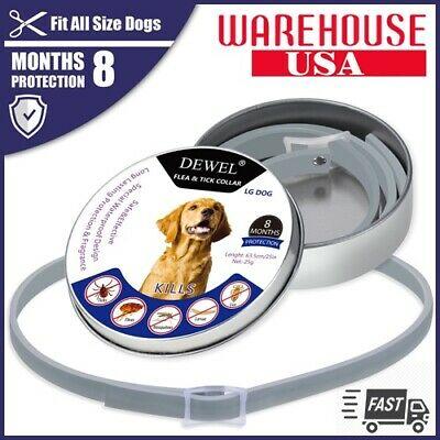 BEST*SERESTO DOG Flea Tick Collar Pets Cats And Protection 8 Months - DEWEL USA