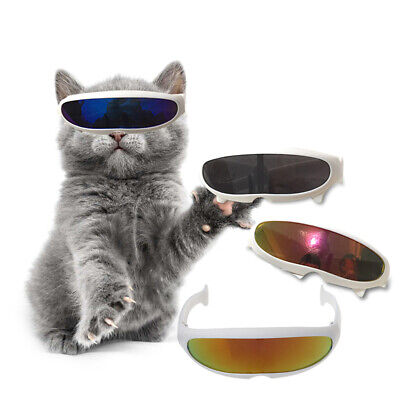 Pet Use Summer Visor Sunglasses Windproof Beach Dog Cat Photography Prank Props